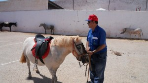 Juan y el ponny Estrella feria 2009