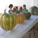 Niños en la Feria de Septiembre 2013