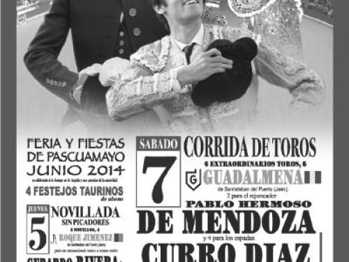Cartel de toros Pascuamayo 2014